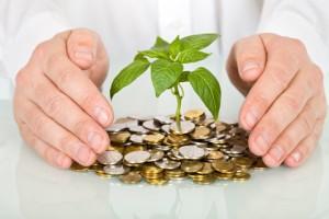 investissement forex